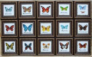 коллекция панно бабочки